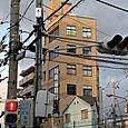 4_jap_kyoto_fils_bats