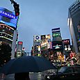 4_tokyo_shibuya_pluie_soir