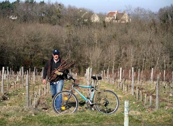 1ny_to Loire_vignes_maison