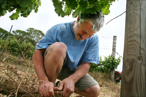 1il_meishar_kneels_vineyard