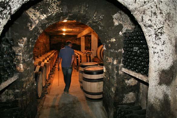 1bize_burgundy_passage_caves