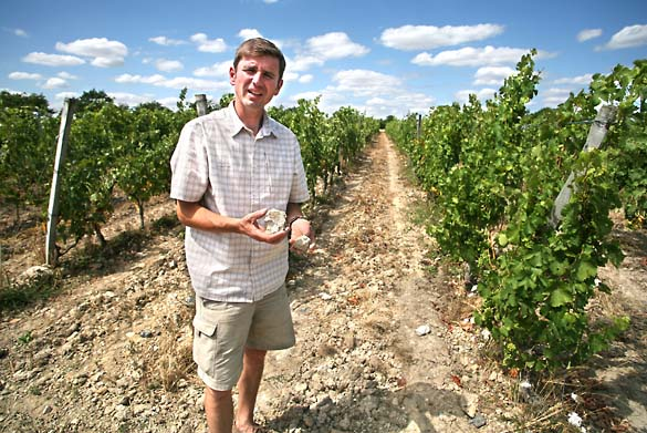 1Damien_Laureau_vineyard_limestone