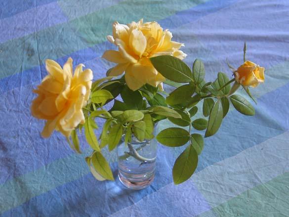 1provence_fleurs_table