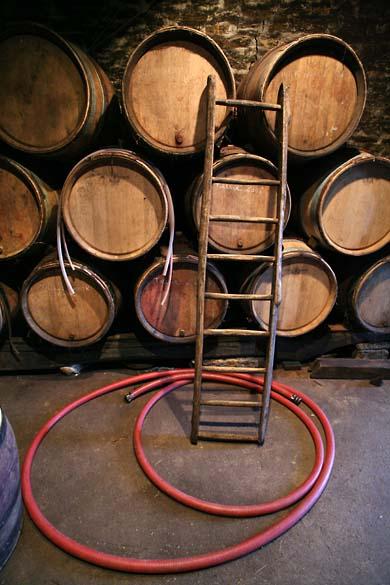 1delorme_cellar_ladder_casks