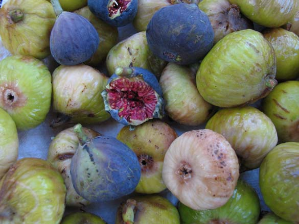 1provence_figues_table