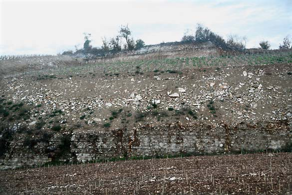 1terroir_landscaping_quarry_St_Romain2