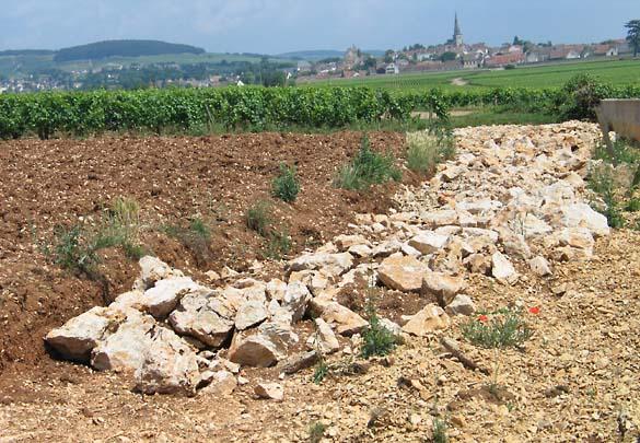 1terroir_landscaping_meursault_drainage_2007