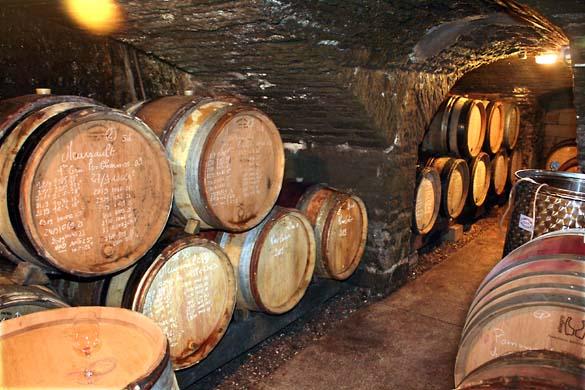 1fanny_sabre_double_cellar