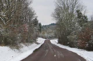 1bouilleur_cru_forests_morvan