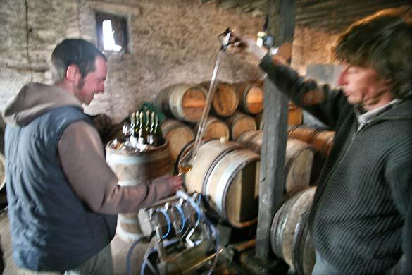 1griottes_sebastien_winethief