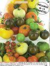 1pommes_kokopelli_tomates_baumaux
