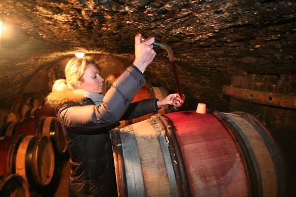 1fanny_sabre_vaulted_cellar_cask_winethief