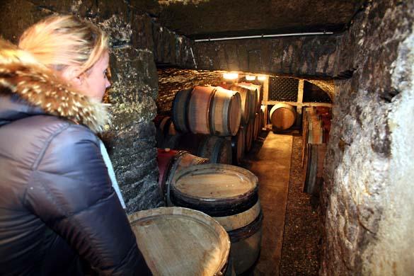 1fanny_sabre_twin_cellars