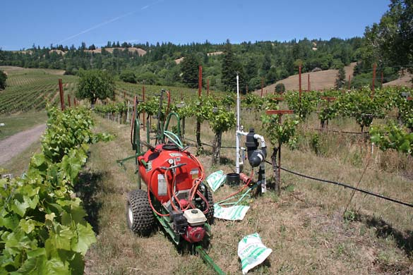 1lazy_creek_pump_vineyard