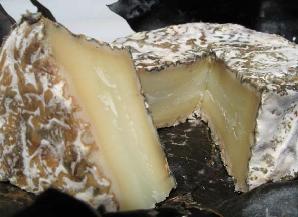 1aged_goat_cheese_texture1