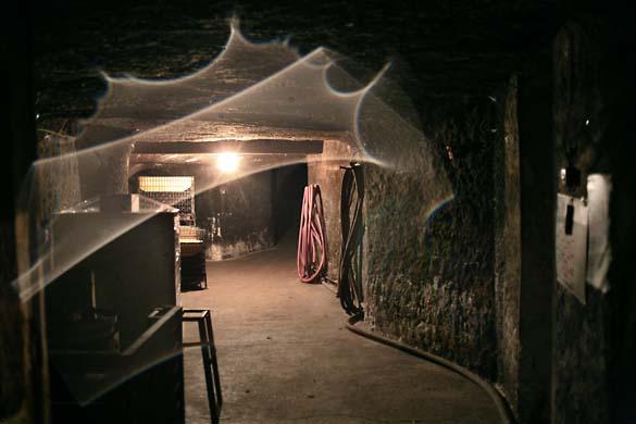 1CRB_cellar_entrance_mold