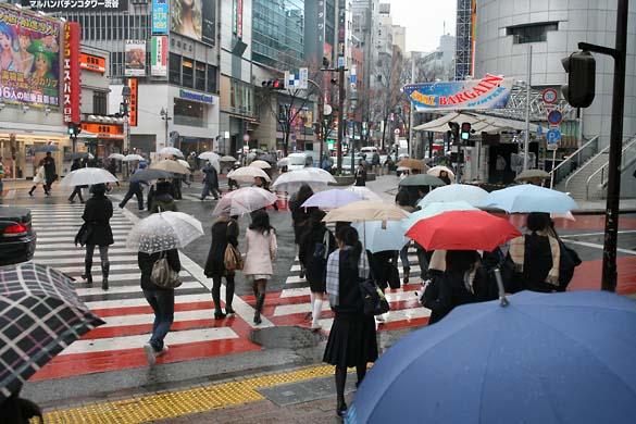 1japan_tokyo_shibuya_parapluies