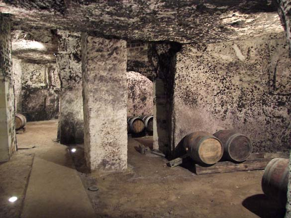 1ampelidae_les_roches_cask_cellar_galleries