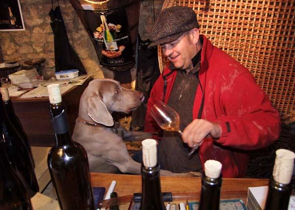 1ganevat_jura_dog_wine_lover