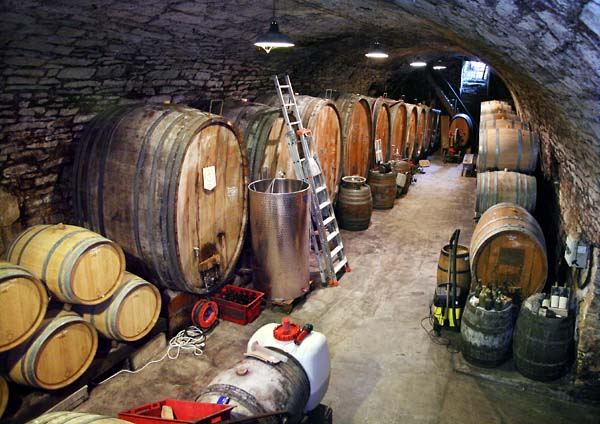 1tournelle_jura_cellar_overview