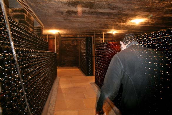 1JM_Roulot_cellar_transparency