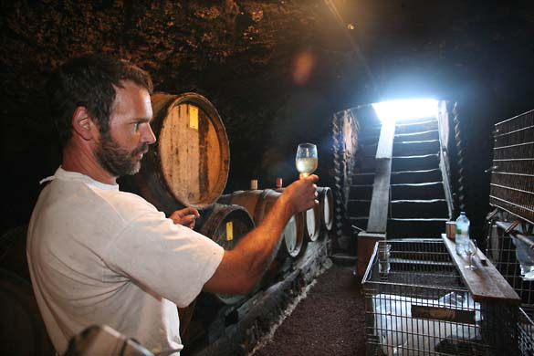 1pierre_beauger_looking_at_wine