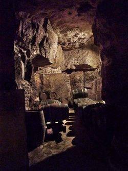 1ampelidae_les_roches_vertical_cask_cellar