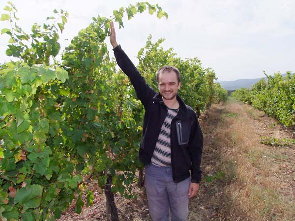 1grand_vostock_franck_duseigneur_vineyard