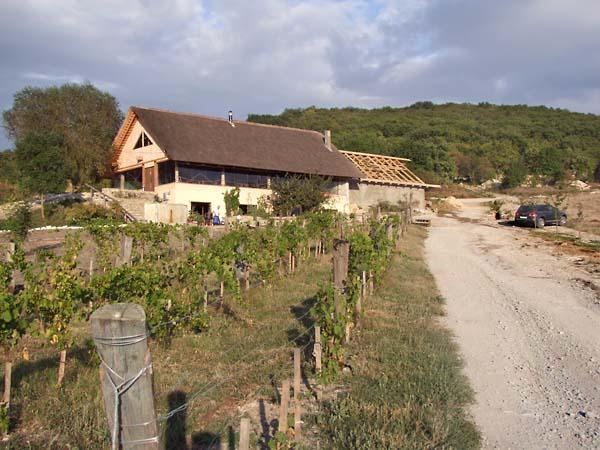 1semirorie_building_wine_garage_restaurant