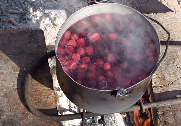 1alain_dugas_driverUAZ_berries_cooking