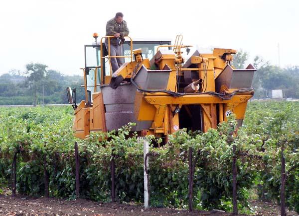 1russia_harvest_combine_