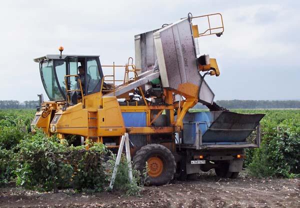 1russia_harvest_combine4