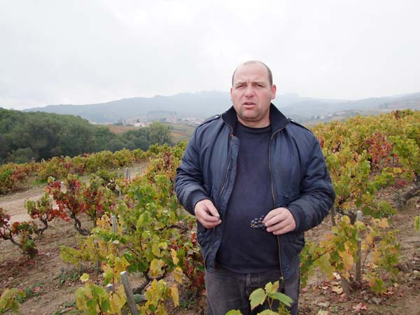 1georges_descombes_Morgon_old_vines