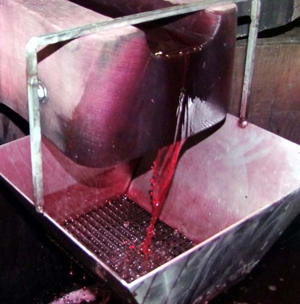 1georges_descombes_jus_gamay2