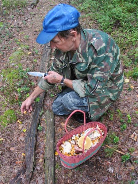 1organic_russia_picking_mushroomsvalentin