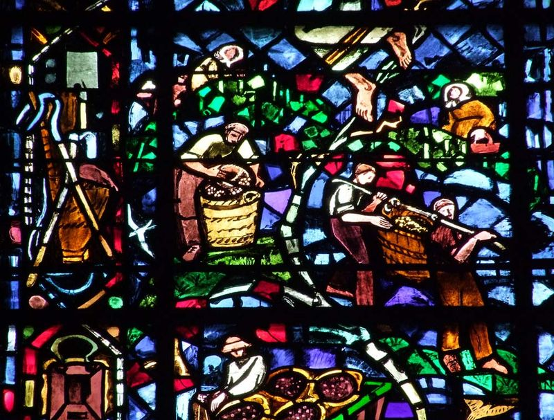 1reims_harvest_pickers_cathedral_stained_glass