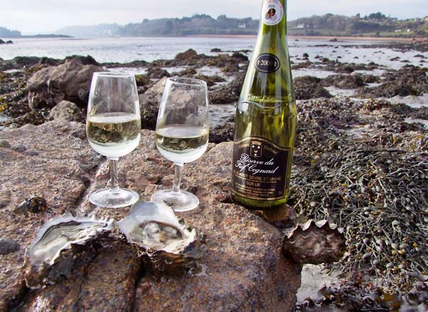 1bretagne_paimpol_oysters_muscadet
