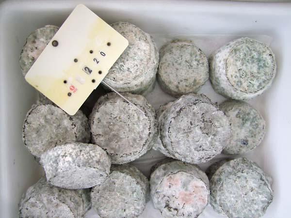 1saint_aignan_market_goat_cheese