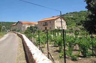 1amphorae_winery_israel