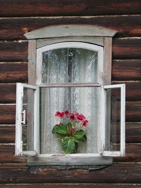 1russia_samogon_window_flowers