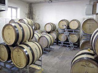 1pacalet_philippe_piece_fermentation_blancs