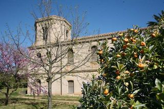 1abbaye_lerins_clementines