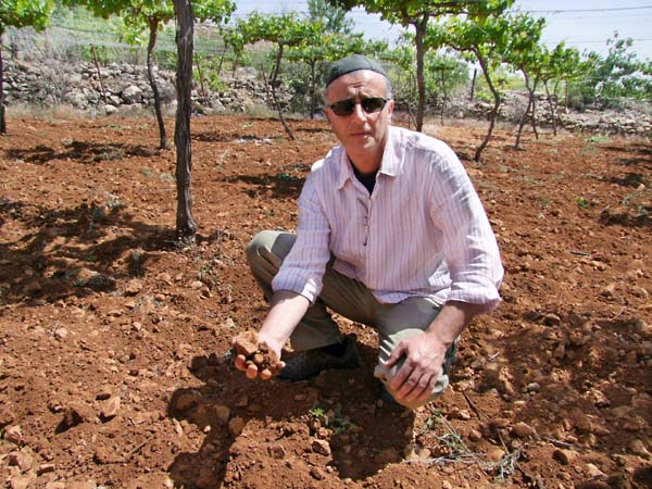 1hebron_soil_michel_murciano