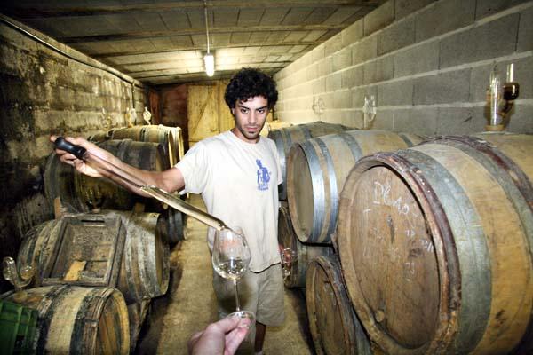 1courtois_claude_etienne__romorantin_wine