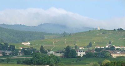 1julie_balagny_fleurie_beaujolais_hills
