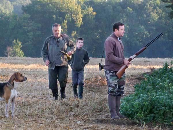 1fox_hunting_edge_woods_shooter