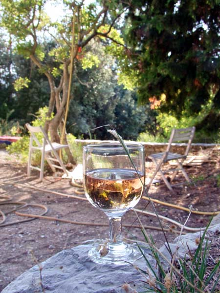 1verre_rose_provence