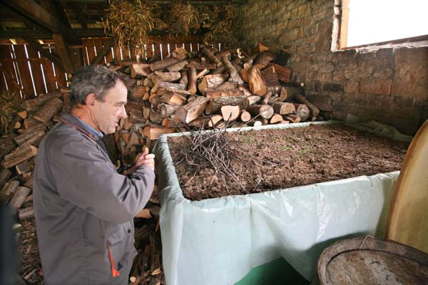 1guy_bussiere_fermenting_pomace