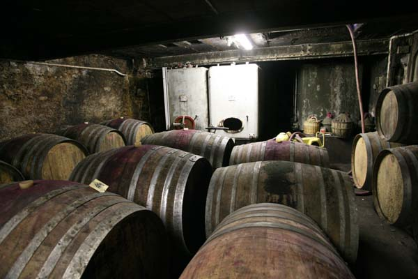 1cousin_olivier_wines_cellar_vats_casks