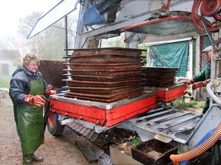 1cider_apples_pressing_revolving